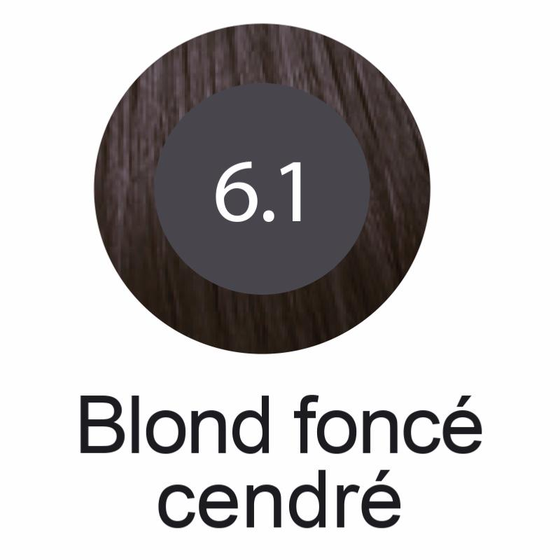 coloration professionnelle kar s colors n 6 1 blond fonc cendr laboratoire symbiose cosm tique. Black Bedroom Furniture Sets. Home Design Ideas